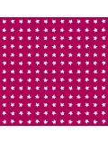 eloisbio-motif étoilé prisci